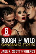 Rough & Wild Gangbang Stories