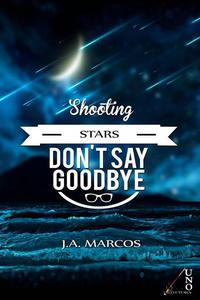 """SHOOTING STARS DON'T SAY GOODBYE"""