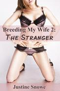 Breeding My Wife 2: The Stranger (Interracial Cuckold Voyeur Erotica)