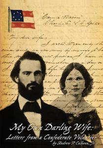 My Own Darling Wife: Letters From a Confederate Volunteer