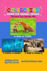 Collective Nouns for Animal Groups - Picture Fun Series