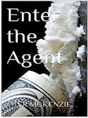 Enter the Agent - R version