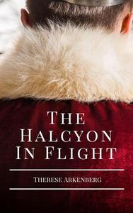 The Halcyon in Flight