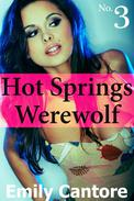 Hot Springs Werewolf, No. 3