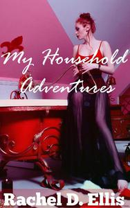My Household Adventures