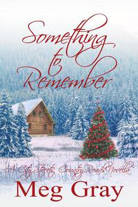 Something to Remember: A City Streets, Country Roads Novella