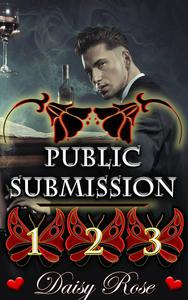 Public Submission 1 - 3