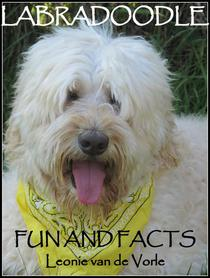 Labradoodle Fun and Facts