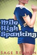 Mile High Spanking (Dominant Billionaire BDSM Erotica)