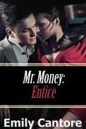 Entice: Mr. Money