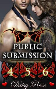Public Submission 4 - 6
