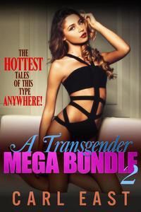 A Transgender Mega Bundle 2