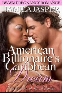 American Billionaire's Caribbean Dream
