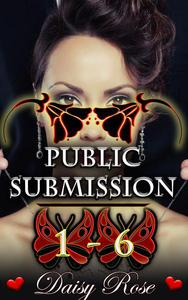 Public Submission 1 - 6