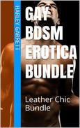 Gay BDSM Erotica Bundle