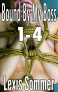 Bound By My Boss 1-4