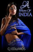 A Taste of India