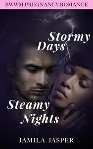 Stormy Days, Steamy Nights: BWWM Romance Novel