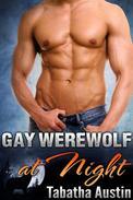 Gay Werewolf at Night