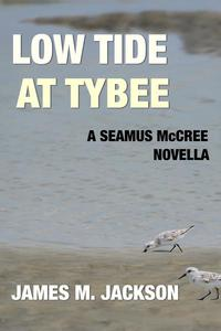 Low Tide at Tybee