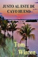 Justo al Este de Cayo Hueso