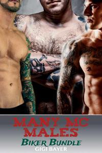 Many MC Males Biker Bundle