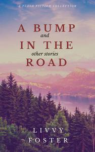 A Bump in the Road and Other Stories - A Flash Fiction Collection