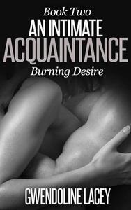 An Intimate Acquaintance: Burning Desire