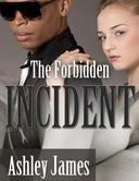 The Forbidden Incident (Couple Erotica)