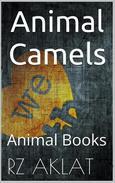 Animal - Camels