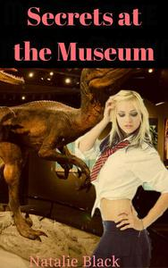 Secrets at the Museum
