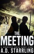 The Meeting (A Seventeen Series Short Story #3)