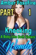 Knocking A Baby Into Both Sisters' Wombs Part 1 Gangbang Threesome Ménage à Trois Brother Sister Erotica Taboo Erotica Incest Erotica Breeding Erotica Impregnation Erotica Bareback Creampie Sex