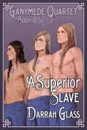 A Superior Slave (Ganymede Quartet Book 0.5)