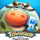 Township Unofficial Player's Guide: Secret Tips, Tricks and Strategies to Share your Vision and Develop your own Town