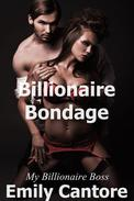 Billionaire Bondage: My Billionaire Boss, Part 3