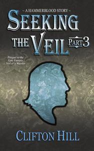 Seeking the Veil, Part 3