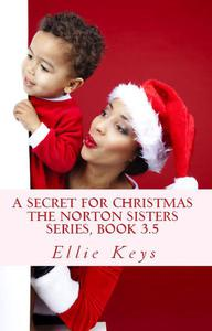 A Secret for Christmas, Book 3.5