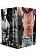 Gay Erotica Bundle Volume 1