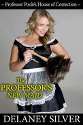 The Professor's New Maid