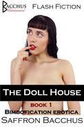 The Doll House - Book 1 - Bimbofication Erotica