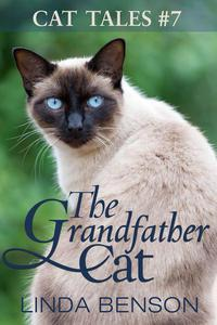 The Grandfather Cat