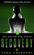 Recovery (A BDSM & Medical Play Novella)