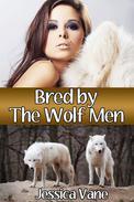 Bred by the Wolf Men (Monster Breeding Erotica)