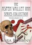 The Aspen Valley Inn Series Collection Volumes 1-3