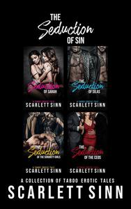 The Seduction of Sin: A Collection of Taboo Erotic Tales