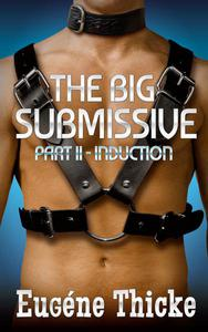 The Big Submissive Part II - Induction