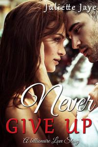 Never Give Up (A Billionaire Love Story)