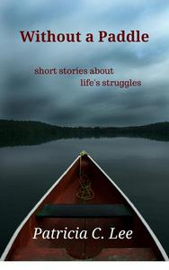 Without a Paddle : short stories about life's struggles