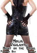 Ninja Vigilante: Night on the Prowl